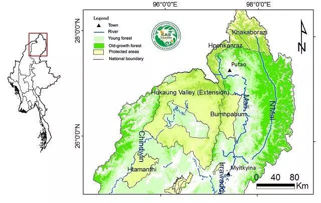 缅甸政府在这一区域建立了很多保护地,从密支那北面到葡萄南面,依次有