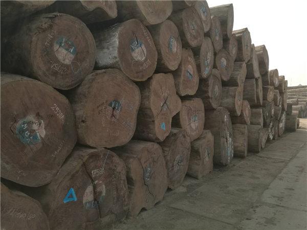 缅甸果敢新锦江计划放松柚木木材出口政策