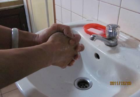 动物七部洗手法步骤