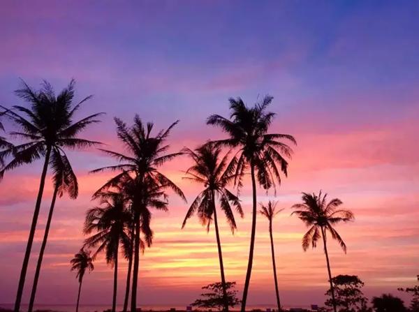 首页 缅甸旅游 >>内容页>   维桑海滩,地处伊洛瓦底省,位于印度洋和