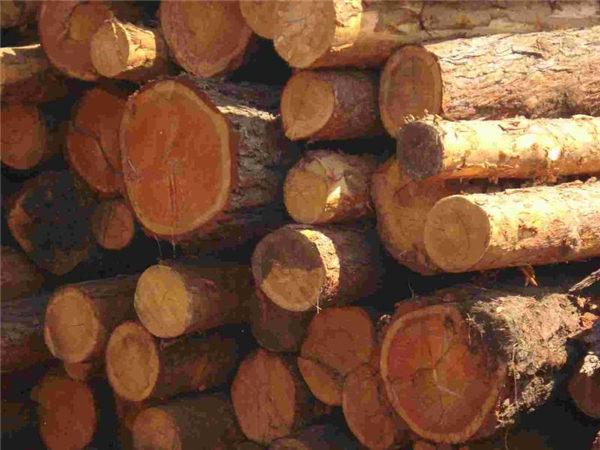 缅甸果敢一天查获8吨走私木材