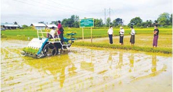 实皆省因水灾而受损失的农田统计