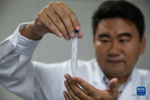 跨越式突破!中国科学家首次实现!